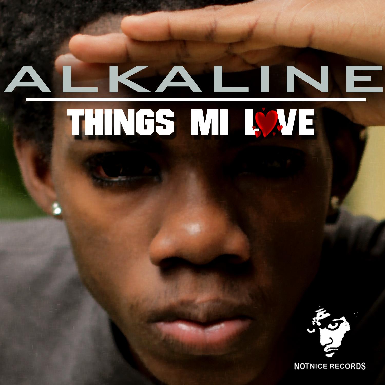 Dancehall things mi love alkaline