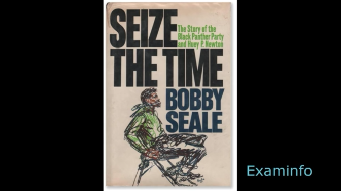 Seize the Time:  The Story of the Black Panther Party by Bobby Seale